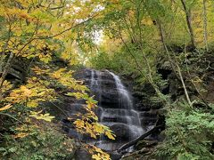 奥入瀬渓流の紅葉