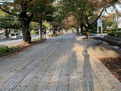 十和田市官庁街通