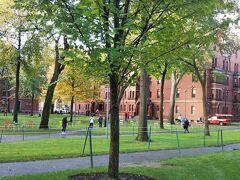 ハーバード大学のキャンパスへ