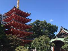 櫛田神社から400メートルくらいのところにある「東長寺」にも行きました。  ここは空海が創建したお寺で黒田官兵衛ゆかりの黒田家の墓などもありました。