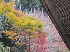 2019.11.22 金 AM11:20  勝林院 https://kyoto-ohara-kankouhosyoukai.net/detail/5522/
