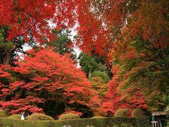 9:20 吉水園(よしみずえん)  江戸時代に作られた山荘庭園。 通常非公開で春と秋に一般公開有り。   入園料 200円 駐車場 太田川交流館かけはし/無料