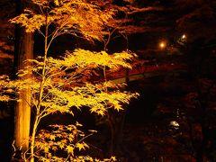 紅葉越しに待月橋が見えますね。まだ渡りませんけど。