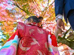 大瀧神社からさらに北上すると、多賀大社があります。 初詣の時にはかなり混雑しますが、他の時期はそんなに混んでいません。