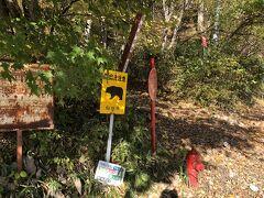 次に向かったのが宮城県にある秋保大滝