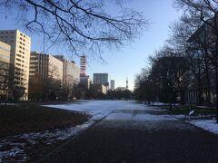 雪の大通り公園の朝。いい天気のようです。レンタ借ります。