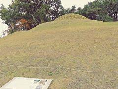 最初の目的地であるキトラ古墳へは、飛鳥駅から自転車で10分。 ひたすら登り道を漕いで行く。(これは電動自転車でないと、かなりツライ!)  キトラ古墳は1983年(昭和58年)にその内部に色鮮やかな壁画が発掘された古墳で、発掘された当初は高松塚に続く飛鳥時代の王族の古墳か!と大きな話題となった。  キトラ古墳が見つかった当時は、高松塚古墳の二の舞にならぬ様、できるだけヒトが石室内に立ち入らぬように調査を行ったそうだが、それでも、いったん外気に触れて湿度と様々な細菌が侵入してしまった古墳石室内の壁画劣化は予測以上のスピードで進み、その石室壁画の切り出し・保存作業には、私たち一般人の想像を絶する苦労があったと言われている。  そして、現在のキトラ古墳は、石室に埋葬された方の永久の眠りを妨げぬよう、飛鳥時代と同じ方法で封印され、小さな丘として存在している。