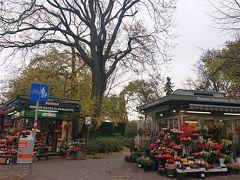 市民公園の入り口にある花屋さん。