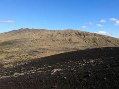 三宅島での今回の仕事が終わった後、飛行機の出発まで時間があったので、七島展望台へ行ってみることにした。 山道の両側には緑が多かったが、2000年の噴火の直後は一面荒涼とした景色となり、緑はまったく無かったそうだ。 展望台が近づいて来ると、緑の中に立ち枯れた木々が目立つようになり、さらに上に行くと、荒涼とした景色となった。 そして、展望台の正面には、雄大な雄山の山体が広がっていた。