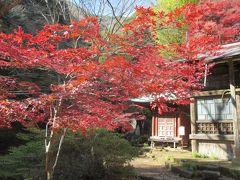 こま参道を上りきって、女坂に向かいました。八意思兼神社の脇にある紅葉がきれいです。八意思兼神社はスタンプラリーの4番目のチェックポイントです。