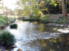 引地川源流 ところどころ川面まで近づける