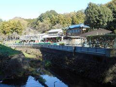 東名高速をくぐり北上すると園内には釣堀まであった