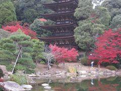 最後は、瑠璃光寺五重塔。 美しさは日本三名塔の一つに数えられ、室町中期における最も秀でた建造物と評されています。ちなみに、日本三名塔の他2基は、奈良県の法隆寺と京都府の醍醐寺にある五重塔です。