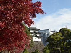 富士見櫓だけは秋の装い。紅葉とともに撮影。