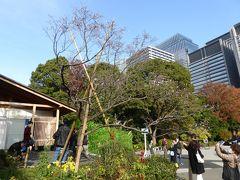 三の丸尚蔵館の前でこの日最後の桜