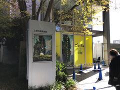 上野の森美術館へ。 お目当てはゴッホ展。 このあと神戸にも来ますが、上野の森にはまだ行ったことがなかったので行ってみたくて。 開館時間前に着きましたが、前倒しになっていたようで既に列が進んで入館出来ていました。  音声ガイドを借りてじっくり1時間半鑑賞。 杉咲花ちゃんの声がすごく心地よかった。 どの作品も見応えがありましたが、その中でも糸杉は圧巻でした。