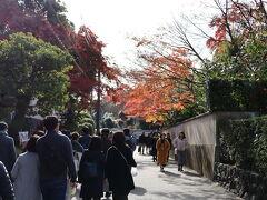 夫との待ち合わせにはまだ時間があったので、そのまま人の流れにのって東福寺へ。