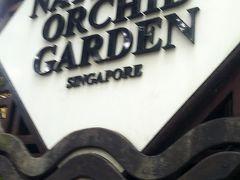 私達がシンガポールに着いた日がマラソン大会と言うことで、道路が閉鎖されたり色々な事情で旅程が少し変更されました。ガイドさん曰く「旅程変更で今日は早くホテルに入れます。飛行機が遅れて03時発だと聞いたので皆さん疲れてるでしょうから良かったですね。」 今日最後の観光場所は明日行くはずだったシンガポール植物園。ここまで晴れていたけど上空に暗い雲が多くなる。雨はまだ降っていないけど湿度は99%じゃね?くらいに湿気が凄いです。ズボンがじっとりして気持ち悪い。