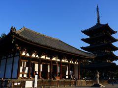 近鉄奈良駅に戻って、少し歩いて興福寺をチラリ。 どうしても国宝館の阿修羅像を拝みたかったのです。 阿修羅像は何度見ても感動です。