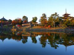 猿沢池から興福寺をパチリ。
