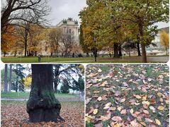 秋らしい公園を見つけて入ってみる。あ~ヨーロッパの秋やなぁ。晴れてたらここらでゆっくりしたかったなぁ。