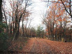夏は賑わうキャンプ場も今はひっそりとした公園です。