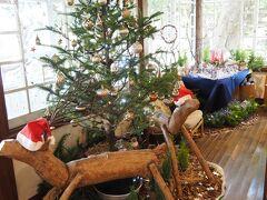 横浜山手テニス発祥記念館  星降る森のクリスマス  世界のクリスマスには含まれませんが、飾り付けがされています。