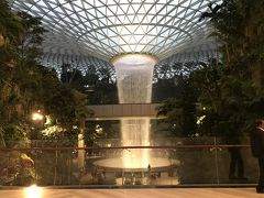 時刻は6時40分。市街地へ向かうにはまだ早いので散策して時間を潰します。 飛行機が到着したターミナル1に隣接する商業施設『JEWEL』に来ました。  ふぉぉぉぉ(*゚0゚) 建物の中にジャングルが…! 天井から水が…!!