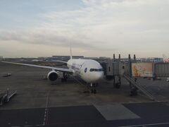 朝早い羽田空港。伊丹行の機体です。ONE WORLD塗装。 とはいえ、但馬行に間に合えばよいので、始発ではありません。 これから、1日8レグのスタートです。