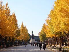 靖国神社の参道のイチョウ並木は特に素晴らしい。 都心の紅葉はここがおススメポイントでしょうね。  乾通りの通り抜けは最近の定番行事になっているが、大嘗宮一般参観は今年のみの特別な行事、大混雑は仕方ないですね・・・ 行列に、人に疲れても、イチョウの黄色に癒された晩秋の1日。