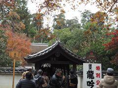 """特別公開されている国宝龍吟庵へ。""""東福寺三名橋""""と称される本日3つ目の橋、偃月橋(えんげつきょう)を渡り。"""