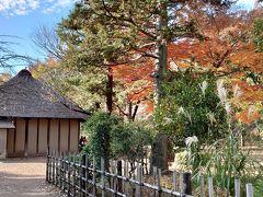 まずは西ゾーンへ。 奥に見えるのは農家の綱島家。 茅葺き屋根の民家は江戸時代中期の建物です。