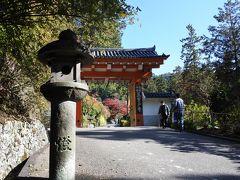 三室戸寺の正門です。この辺りからガラッと雰囲気が変わり、厳粛な気配が漂います。