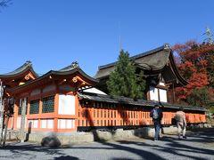 こちらは立ち寄った宇治神社です。本堂の裏に少しだけ紅葉がありました。  全体的に小ぢんまりとしていて、少し周って後にしました。