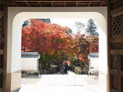 興聖寺の門内から撮影した紅葉が素敵でした。まるで門が額縁のようです。  全体的な紅葉の密度は事前情報よりも少ないですが、境内や石垣の造りなど興味深い部分もありました。