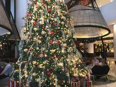 ホテル到着!真夏なのにクリスマスツリーがキラキラ。