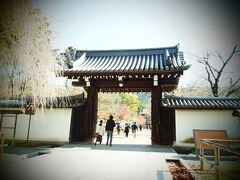 15分弱ほど歩いて醍醐寺に到着。思ったより遠くなかった。