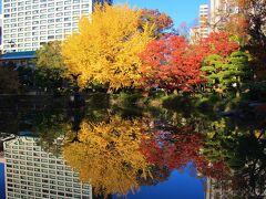 雲形池の黄葉と紅葉 水面に黄葉・紅葉が映り込んで綺麗でした。 ベストなタイミングだと思われます。