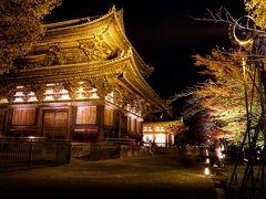 こちらも国宝の金堂。 金堂の中に入ってみると、重要文化財の薬師三尊、十二神将が神々しく並べられていました。