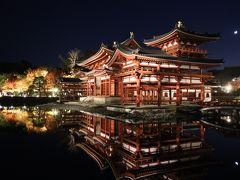 表門を入るとすぐの前に鳳凰堂がズドーンと現れます! 存在感ハンパないですねー。 この時の為に、朝から三脚担いで京都の町を散策してきましたが、やっぱりと言えばやっぱり。 平等院では三脚の使用は禁止でした…。 なので、手持ち撮影で頑張るしかない!