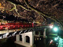 この角度からだと橋が灯りに照らされて、 キレイに見えるヨ。