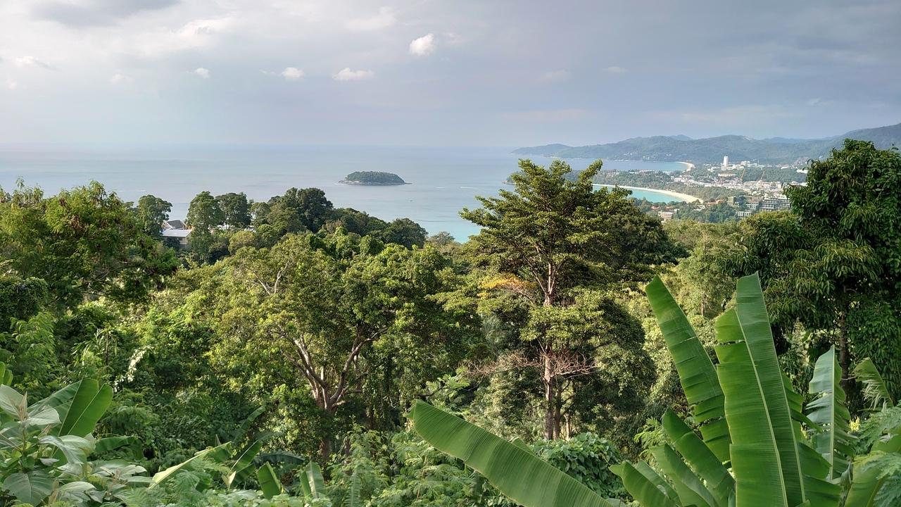楽しみにしていたカロンビューポイントにやってきました。湿度が高くてちょっと霞んでいたけれど、三つの三日月型ビーチがはっきり見えたので満足です。 ここへ至る坂の途中で突然、路傍に象が現れてびっくり。タイでは神聖なる生き物なので保護しているのか観光目的なのかはかりかねます。 ビューポイントには記念撮影用の鷹がいましたが、そっちは完全に観光目的で使われているようでした。