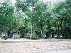 仕方なく、バクーの町が一望できるという高台に上ります。途中、「殉教者の小道」という立派なお墓があるエリアも通ります。