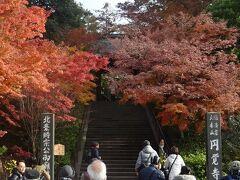 北鎌倉から円覚寺  北鎌倉駅からスタートして、すぐの円覚寺へ。 天気予報は晴れだったが、生憎のくもり時々晴れ。 円覚寺前の紅葉は見事だった。