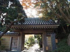 報国寺 山門 11:22頃  竹の寺として人気。