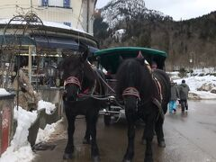 今回かなり雪が降っていたので、ミュンヘンからノイシュバンシュタイン城に行くバスツアーの催行が全然なく、唯一あったベルトラの英語ツアーを申し込みました! 当日は10カ国以上の国の人たちが参加して満席でした。  まずは、大型バス停留所に到着したあと、 お土産屋をみながらお城の入り口に行きます。 (大体10分ぐらいかかります) お手洗いがないので見つけたら早めに行っといた方がいいです! (無人ですが有料)  ツアーのお客さんは何時までにお城の入り口にきてくださいと案内があるので、 その時間までにお城に行かないといけません!  ちなみにすごい長い坂ですが、歩き40分ぐらい、馬車だと往復約3ユーロで20分で着きます!いつもオフィスワークをやっている姉は歩きで登るのに相当体力持ってかれます。。。笑 長蛇の列でなければ馬車に乗った方がいいです!