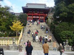 鶴岡八幡宮へ  天園ハイキングコースが通行禁止だったので、予定を変えて鶴岡八幡宮へ来た。 この後、下道で紅葉谷に行こうかと思ったが急な用事が入り、今日はここまで。