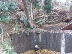 大仏通りを進んで行くと「赤塚不動の滝」 昔富士山や大山詣でに出かける前に体を清めた滝だそう 枯れることのない水だそうですが、近年かなり水が細くなっているそうで、上の方から水が落ちてきているのかと思いきや、細々とした水が…