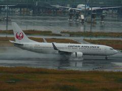 私はこの飛行機をお待ちしていました 無事着陸できたようで・・