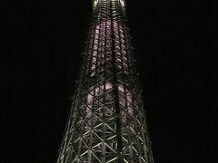 スカイツリー 天望回廊(東京タワーでいう第2展望台?)は見えましたが 先の方は雲が少しかかっていました・・